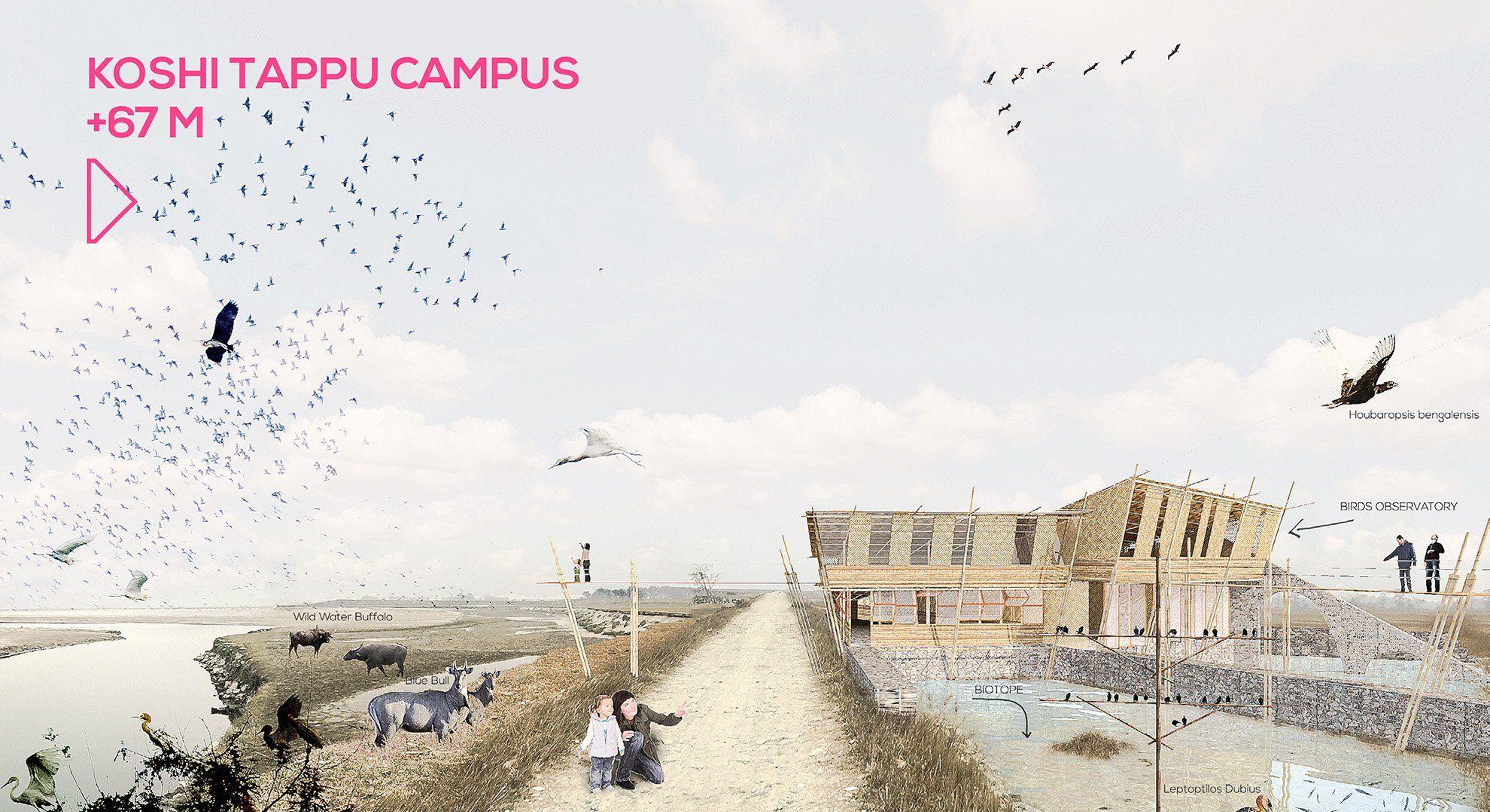 koshi-tappu-campus