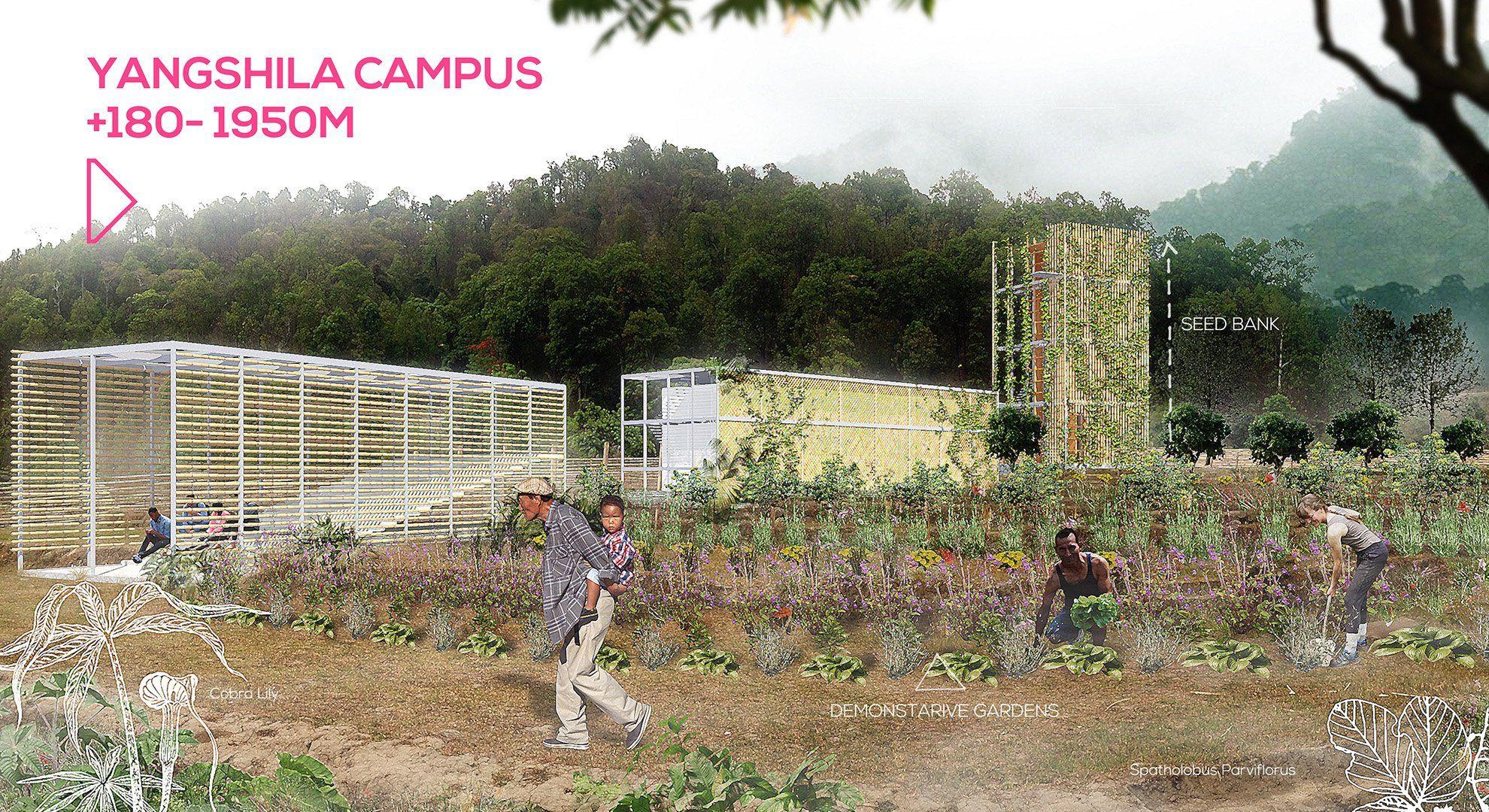 yangshila-campus